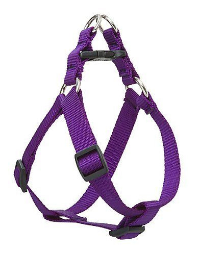 Lupine Basics Step In Harness