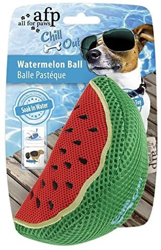 All For Paws Chill Out Watermelon Slice Toy