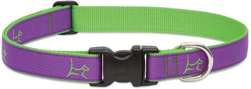 "LupinePet Club Adjustable Collar - Hamilton Purple 1""/12-20"""