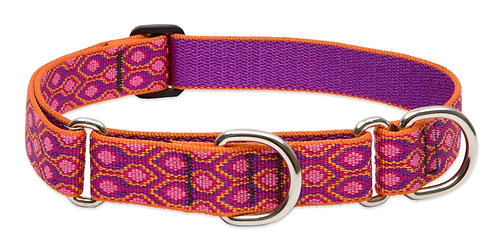 Lupine Originals Martingale/Combo Collar - Alpine Glow