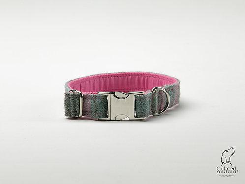 Collared Creatures Abraham Moon Killerton Aqua-Pink Dog Collar
