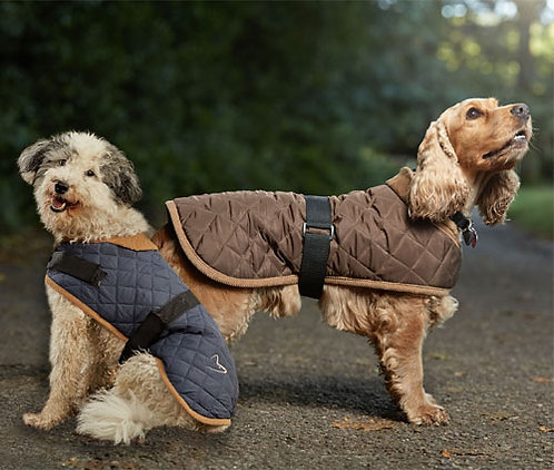 Gor Pets Quilted Worcester Coat