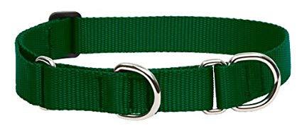 Lupine Basics Martingale Collar - Green