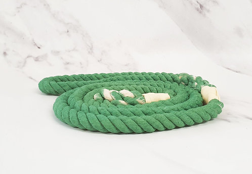 Collared Creatures Pale Green Ombre Dip Dyed Dog lead