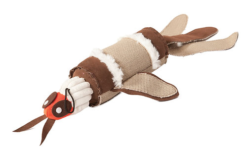 Danish Design Barry Bug Dog Toy