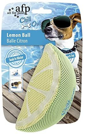 All For Paws Chill Out Lemon Slice Toy