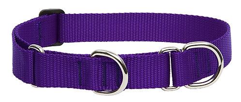 Lupine Basics Martingale Collar - Purple