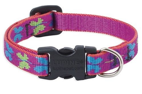 Lupine Originals Wing It Collar