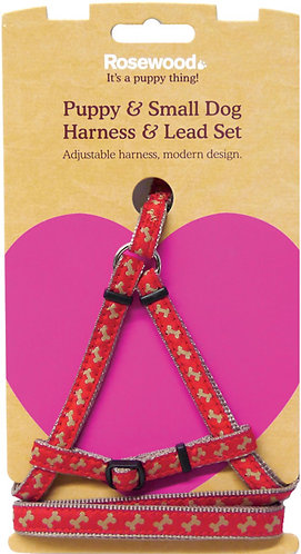 Rosewood Puppy Harness and Lead Set - Bone