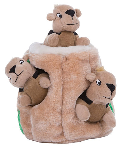 Outward Hound Hide A Squirrel Squeak Puzzle Toy, Jumbo