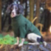 Hotterdog-Jumper-from-Equafleece.jpg
