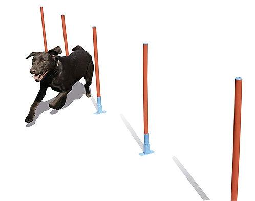 Rosewood Dog Agility Slalom