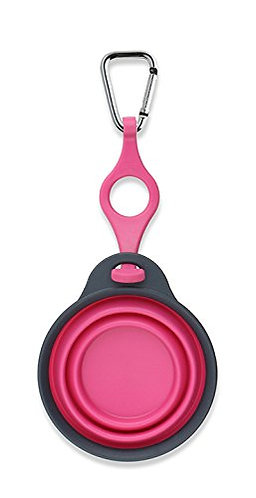 Dexas Popware Travel Cup Water Bottle Holder Pink