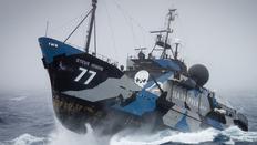 Parfois, c'est bien les pirates. non ?