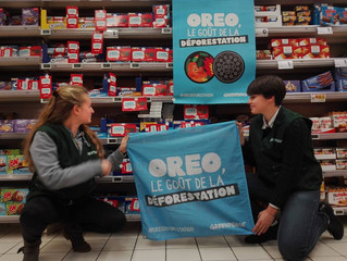 Oreo, quand la gourmandise détruit l'environnement : signez la pétition !