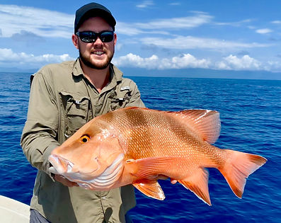 red emperor reef fishing cairns