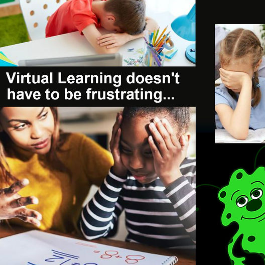 VirtualLearningFrustration.jpg