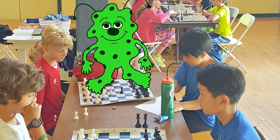 Wakaboomee Chess (2)
