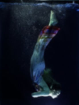 plongée 2.jpg