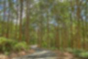 SLIKA 20_resize.jpg