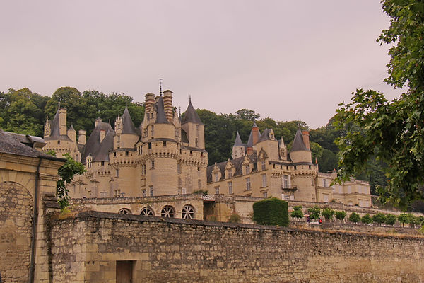 Chateau d'Usee