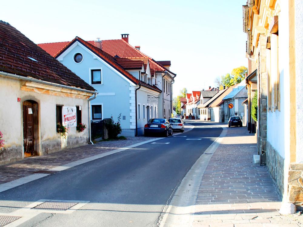 Kostanjevica na Krki mesto