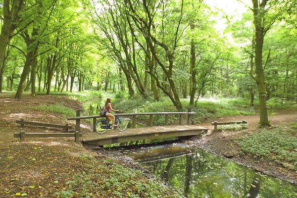 Park pri Amsterdamu