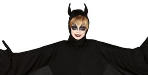 Bat - Child Costume includes top with wings only 7-9 years
