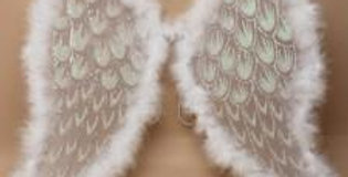 White Net Angel Wings with white and silver glitter and white feather trim.