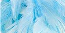 Decorative Feathers - 50g (50g)