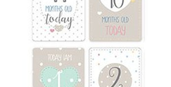 Baby Wishes Milestone Cards (20pk)