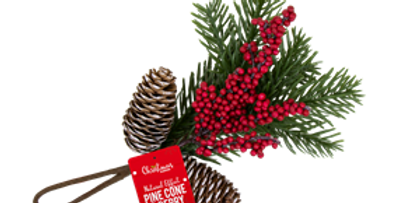 Christmas Pine Cone & Berry Decoration