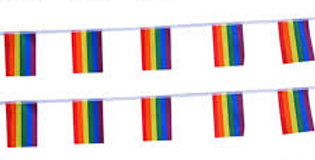 Rainbow  flag banner 10m satin approx 23 flags