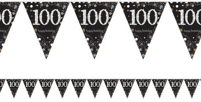 Pink/ gold  Celebration Age 100 Prismatic Foil Bunting - 4m