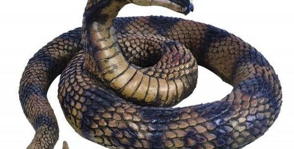 Snake Coiled  approx 60cm