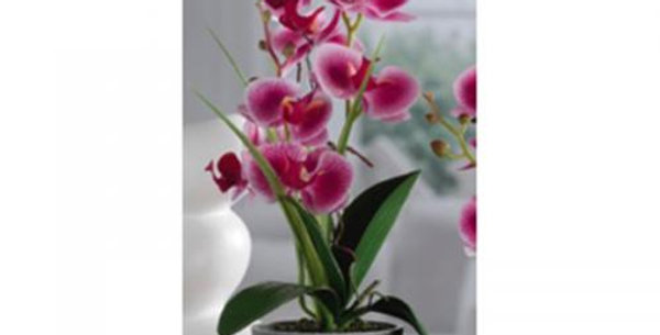Orchidartificial plant in pot h38cm