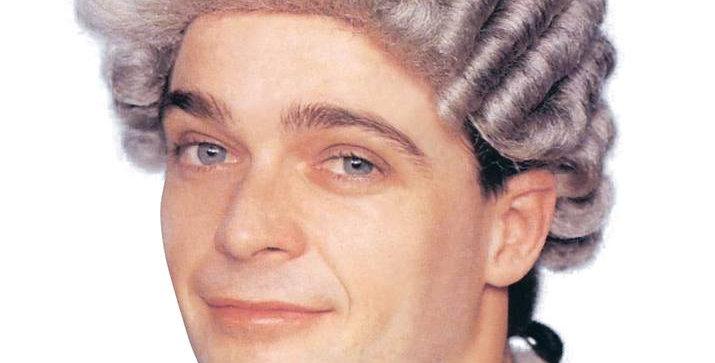 Barrister Grey Wig