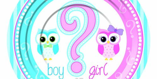 Gender Reveal Small Plate  8pk