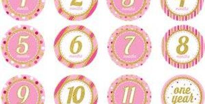Glitter Monthly Milestone Stickers