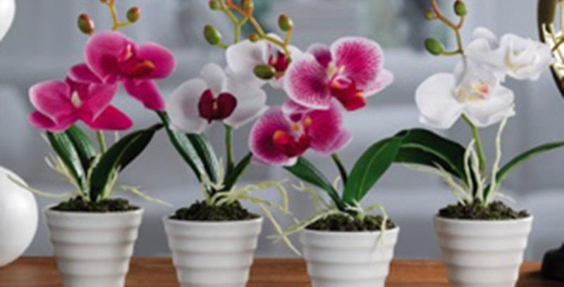 Artificial Orchid in pot h23cm