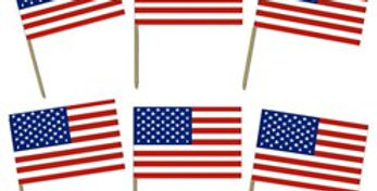 USA American Flag Food Picks (120pk)
