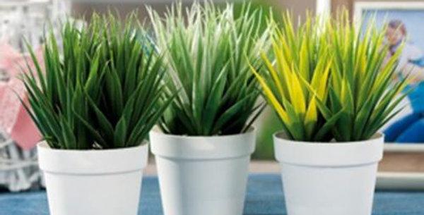 Artificial plant in pot  h19.5cm