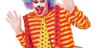 Pop clown Wig Rainbow