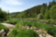 sazava-river-3475032.jpg