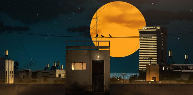 akiva_roof_night_2.jpg