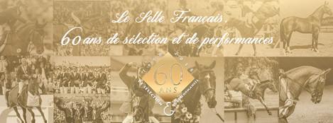 Réalisations des affiches promotionnelles du StudBook Selle Français