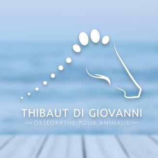 Thibaut Di Giovanni