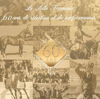 Logo 60 ans SF