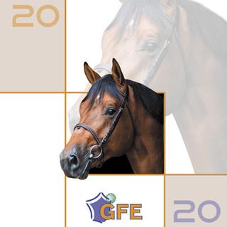 Catalogue Etalons GFE 2020