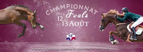 Finales SF 2017Finales SF 2017